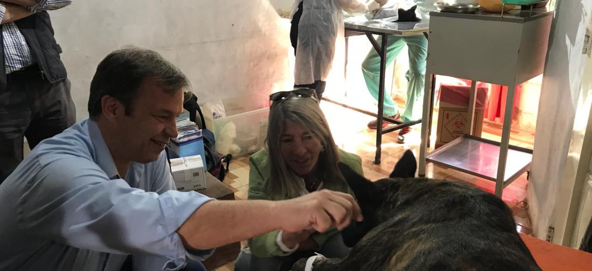 Cascallares supervisó operativo de castración gratuita de animales en Longchamps