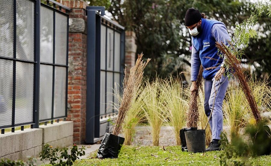 En el mes del ambiente, el Municipio plantó especies nativas en el Parque Industrial