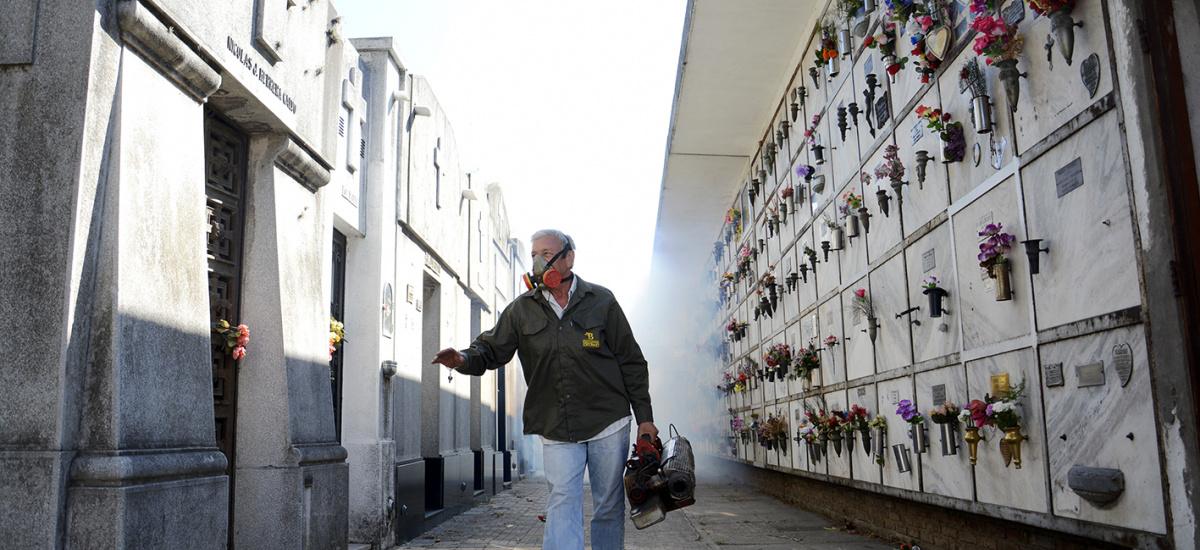 Almirante Brown refuerza las medidas de prevención para combatir al Dengue