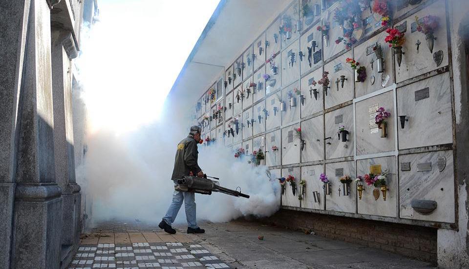 El Municipio de Alte Brown informó que no realiza fumigaciones a domicilio